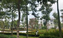 Bán biệt thự Ciputra dãy K6 view vườn hoa, giá đầu tư