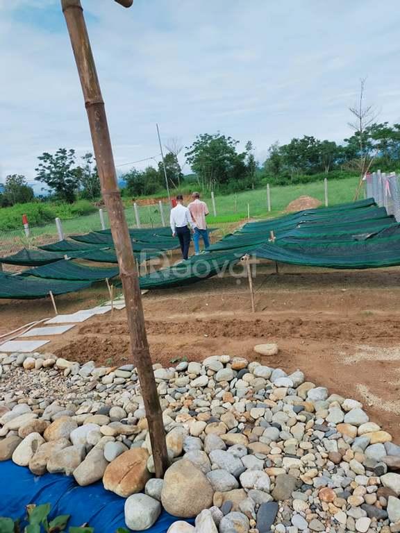 Cần bán lô đất chính chủ