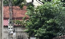 Chính chủ bán nhanh lô 81m2 Thôn Nhì, Vân Nội, ô tô đỗ cửa, giá đầu tư