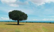 Bán lô đất xã Hòa Thắng nằm gần khu du lịch Bàu Trắng