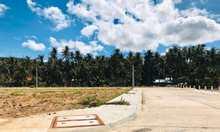 Bán đất tại Đường Quốc lộ 1A, Sông Cầu, Phú Yên diện tích 100m2