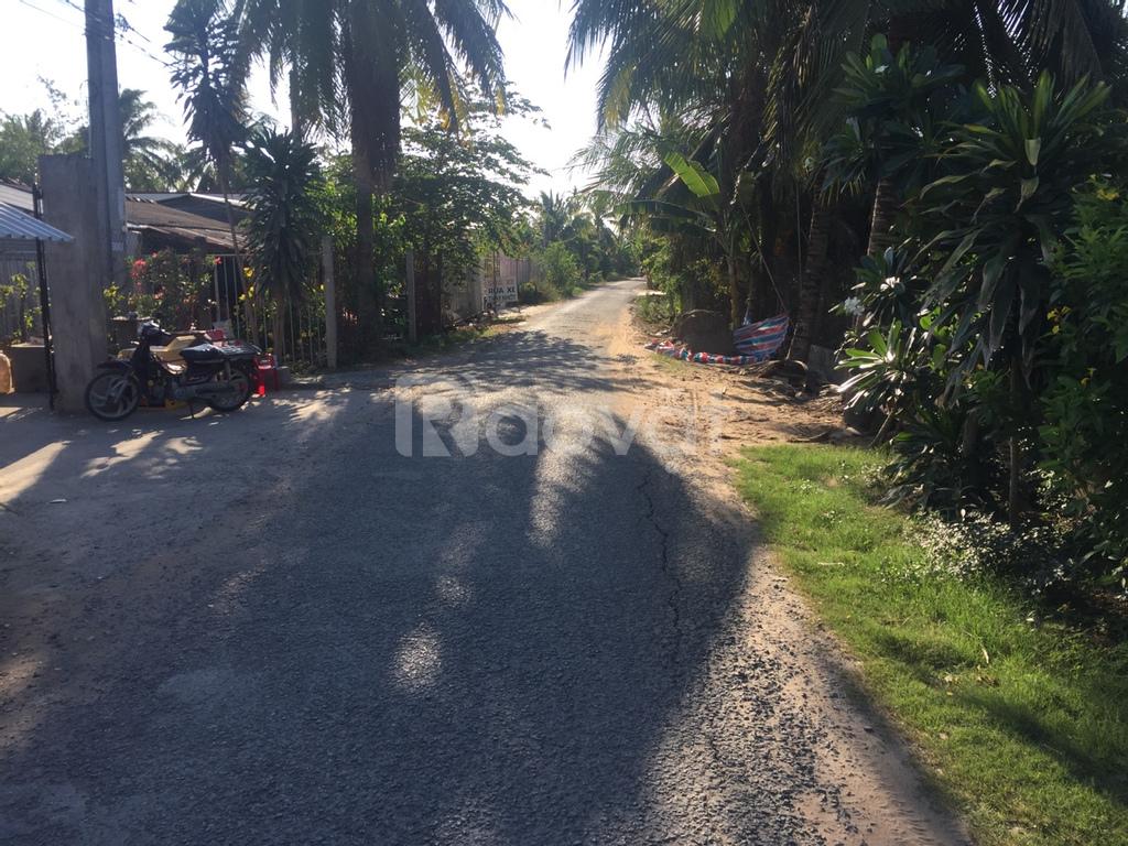 Cần bán dãy nhà trọ và 1800m2 đất đường xe hơi Tân Hương, Châu Thành, Tiền Giang