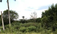 Bán đất Long Phước, sổ đỏ, sân bay Long Thành 614m2