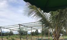Đất xã Diên Đồng bên cạnh khu resort, giá đầu tư