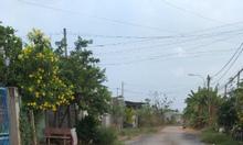 Đất đường Tỉnh lộ 2 có sổ