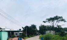 Đất gần KCN Vsip 2,Phường Vĩnh Tân, Bình Dương