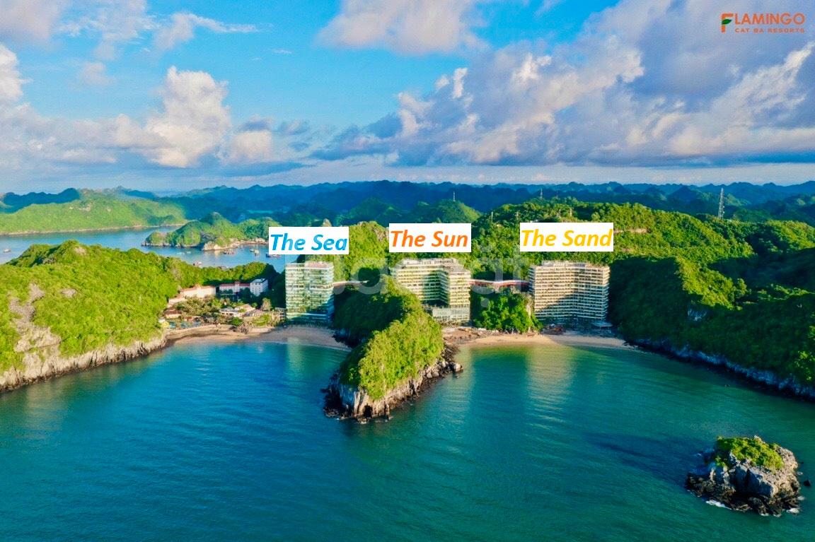 Flamingo Group gửi anh chị voucher ưu đãi đầu tư tại Flamingo Cát Bà Beach Resort