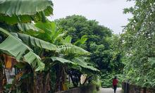 Bán đất tại ngõ Độc Lập, Long Biên, Lô góc, ôtô vào tận nơi