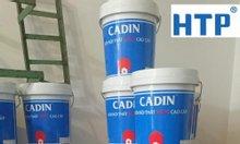 Cung cấp sơn ngói Cadin thùng 18 lít, giá rẻ cho ngôi nhà của bạn