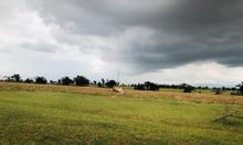 Bán đất  huyện Bắc Bình Bình Thuận cách quốc lộ 1A 250m, gần dân cư