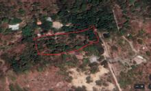 Cần bán đất 1ha đất gần thành phố Bà rịa