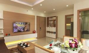 Cho thuê căn 1 phòng ngủ tại Vinhomes Skylake