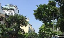 Bán nhà mặt phố thang máy Yên Ninh, 9 tầng, 110m