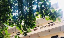 Cho thuê phòng trọ với bếp, nhà tắm khép kín, sạch đẹp gần Lotte Đào Tấn