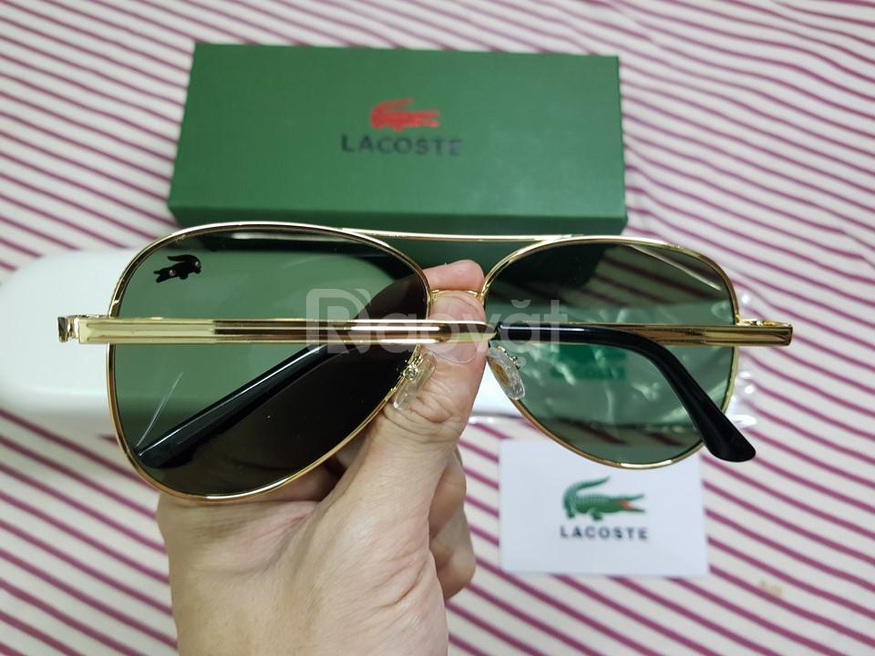 Mắt kính thời trang cao cấp Lacoste, hiệu cá sấu