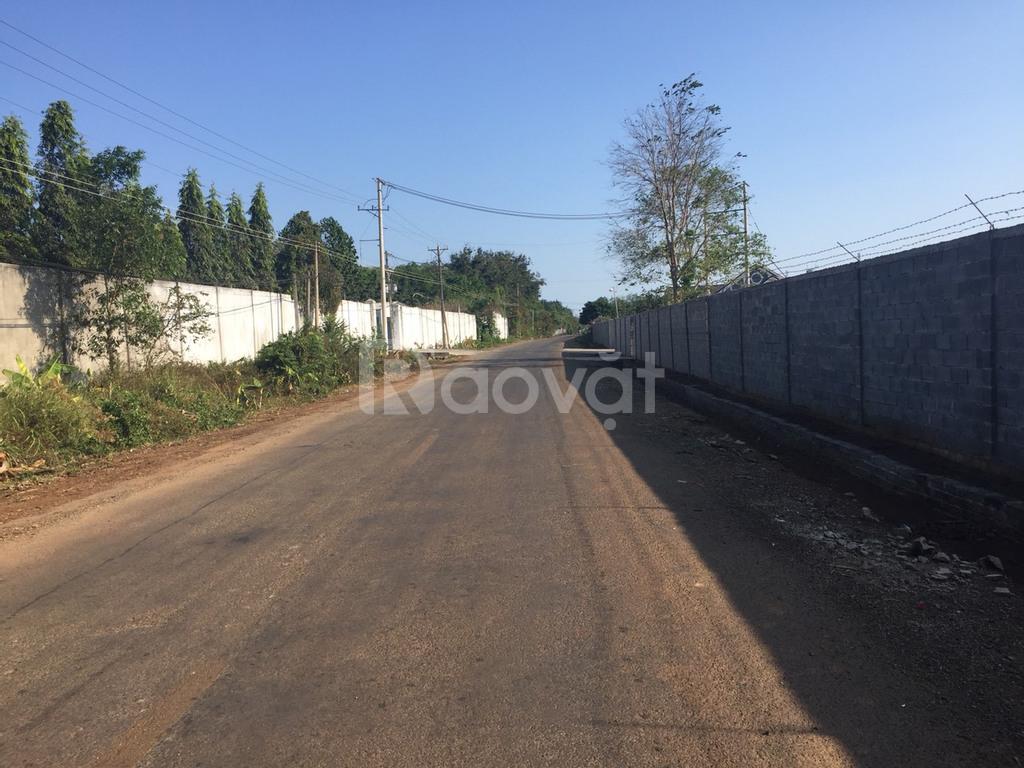 Đất TĐC Phước Bình, Long Thành, DT 11x35m, 100% thổ cư, bán gấp