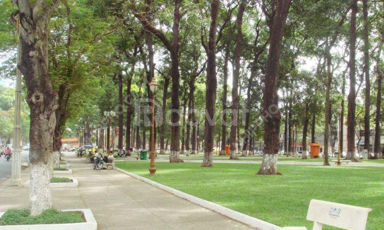Bán nhà mặt phố Nguyễn Đình Chiểu, Hai Bà Trưng