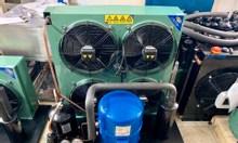 Chuyên bán, lắp đặt cụm máy nén Danfoss 10 hp MT125HU4DVE tại Lâm Đồng