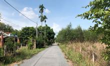Bán đất KDC Tân Hiệp đẹp cao ráo, 1109m2, có 150m2