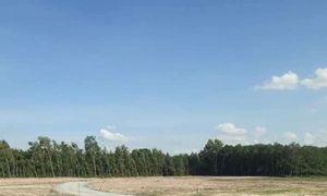 Chính chủ cần bán đất Phường Vĩnh Tân, TX Tân Uyên, Bình Dương