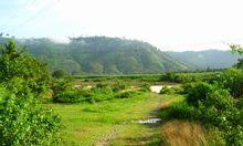 Bán chuyển nhượng gấp đất Đạ Tẻ, Lâm Đồng
