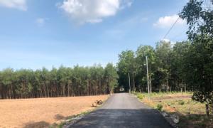 Đất thổ cư 92x105, 9500m2, xã Tân Hiệp, Long Thành, công chứng