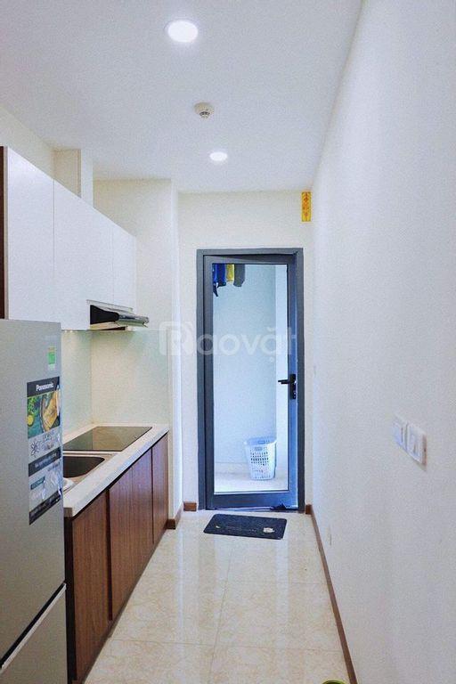 Chính chủ bán căn 3 PN, 2WC, 95m2, tòa CT4 chung cư Eco Green