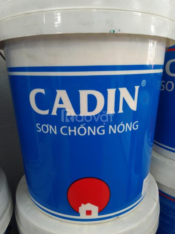 Đại lý cung cấp sơn chống nóng uy tín giảm độ tối đa tại SG