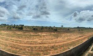 Bán 13,953m2 đất trồng cây sông Luỹ gần QL1a và trang trại dưa lưới