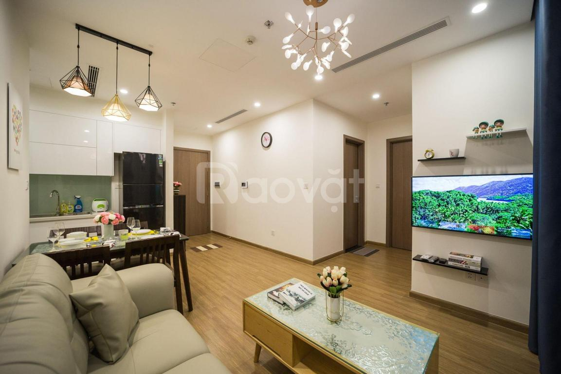 Cho thuê căn hộ chung cư 2pn, tầng cao, view đẹp Vinhomes Dcapitale