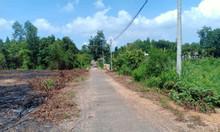 Bán gấp 1179m2 đất ONT KDC ổn định xã Tân Hiệp, Long Thành