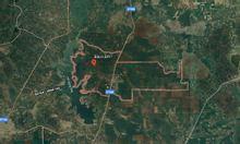 Cần bán 6200m2 đất trồng cây mặt tiền nhựa 6m xã Bàu Lâm Xuyên Mộc