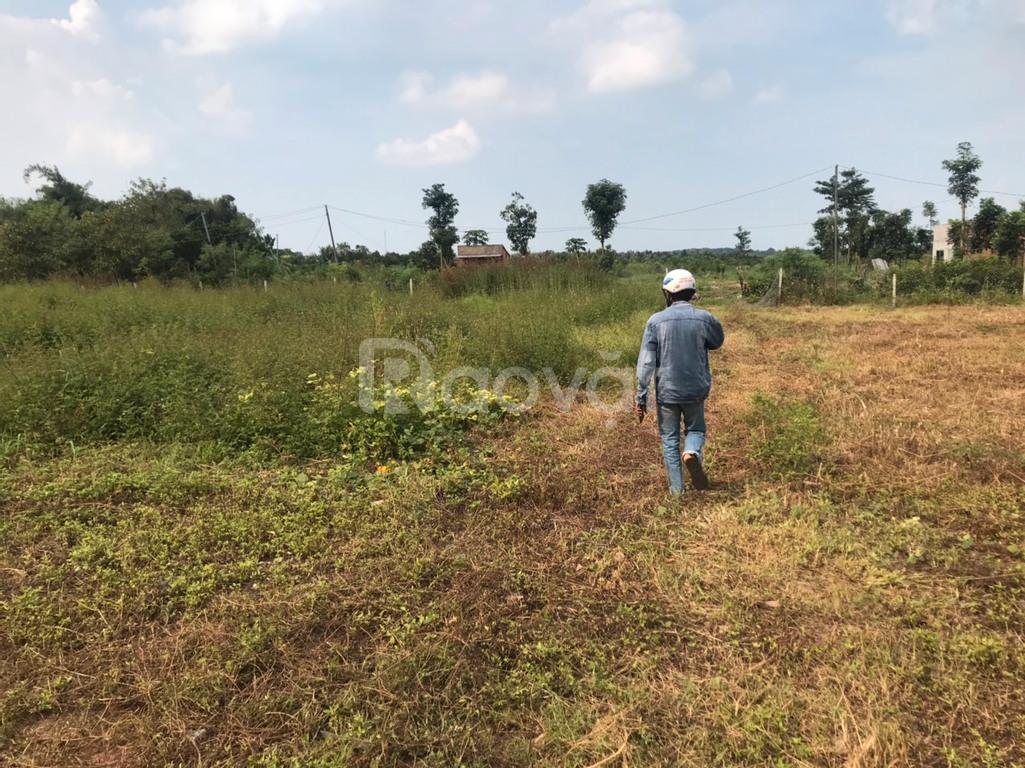 Đất vườn 1000m2 sổ riêng, thành phố Long Khánh