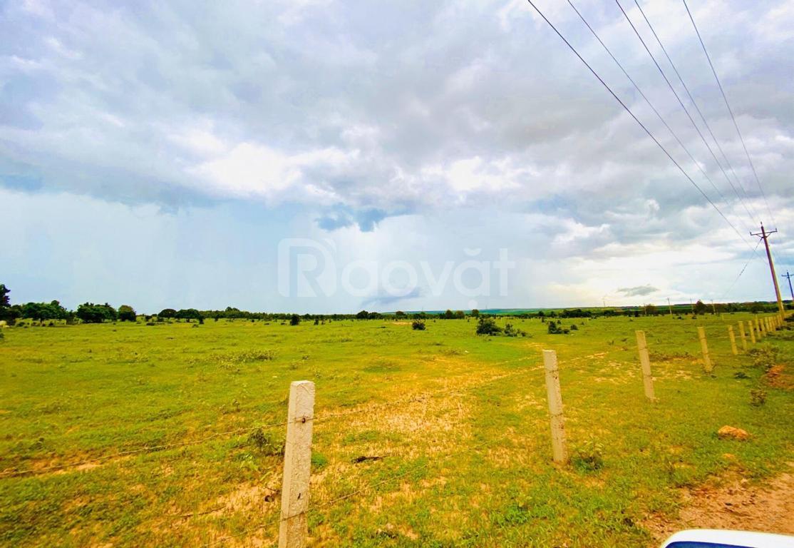 Đất giá rẻ Bình Thuận