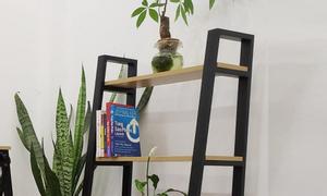 Kệ trồng cây, kệ trang trí trong nhà