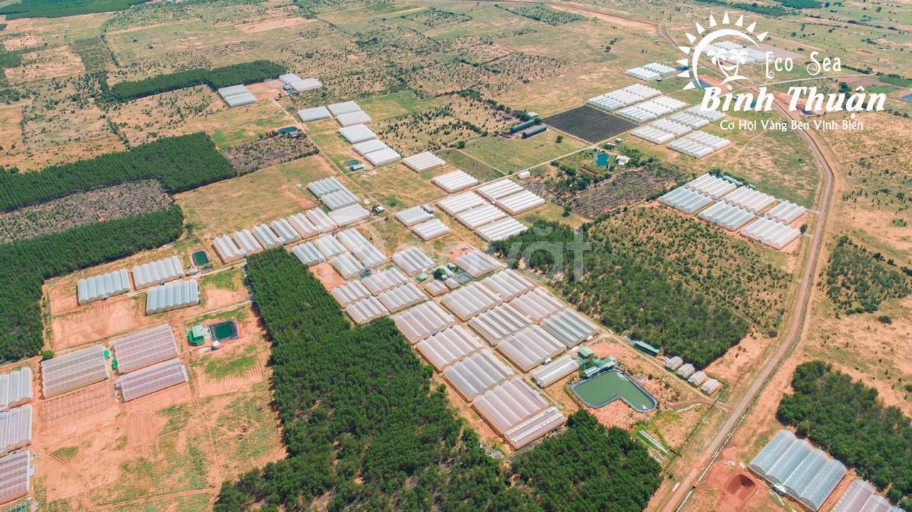 Sở hữu đất nông nghiệp Hồng Thái Eco Sea với tổng giá thấp, dễ đầu tư