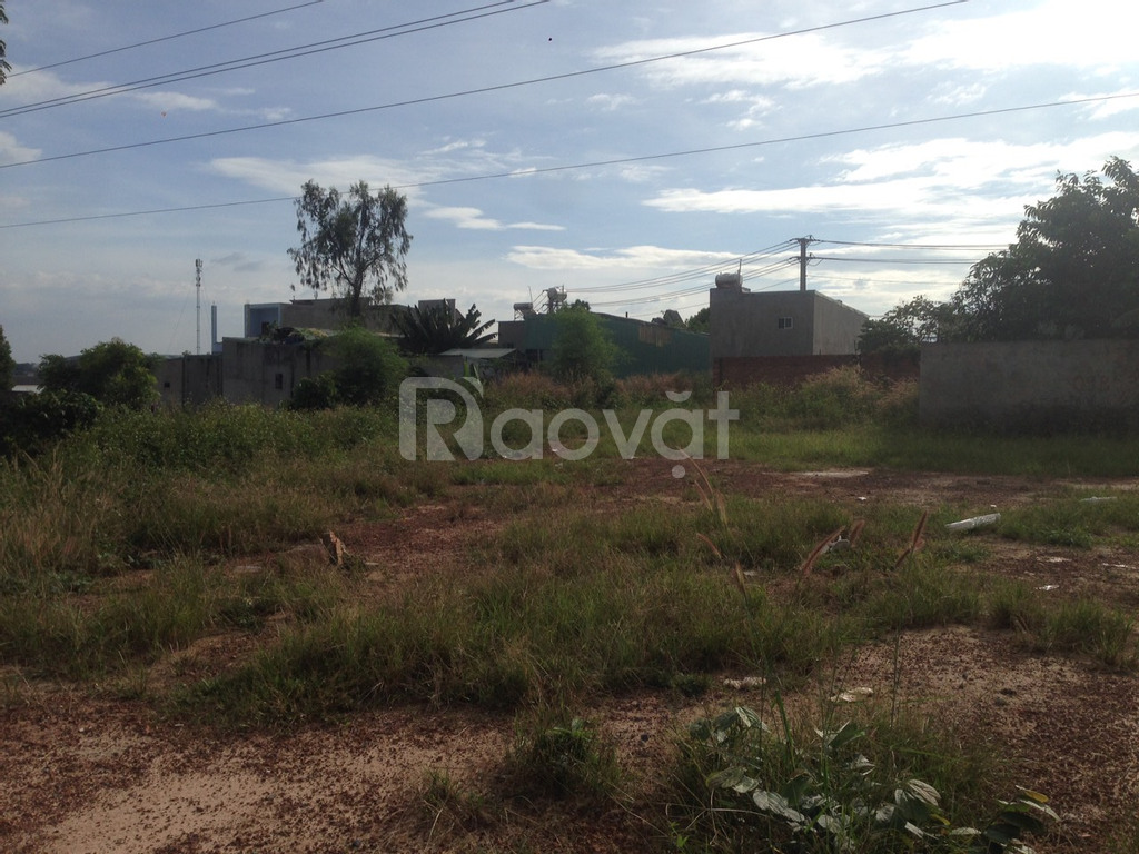 1723m2 đất, 700m2 thổ cư đã tách 4 sổ, phường Tân Bình, TP Dĩ An