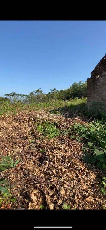 Bán đất vườn Yên Thế, Bắc Giang