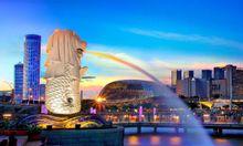 Dịch vụ mua hộ, vận chuyển 2 chiều Việt Nam và Singapore