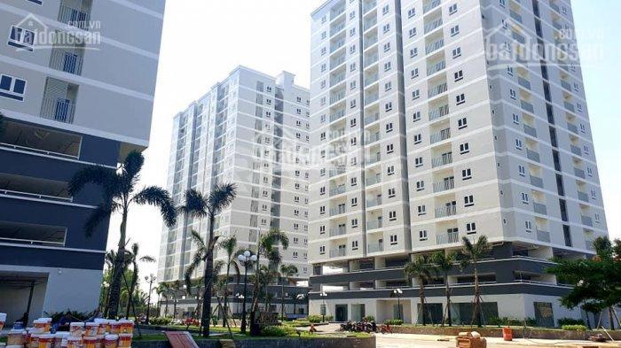 Mở bán 9 lô thương mại tầng trệt căn hộ Phú Gia, bàn giao kinh doanh