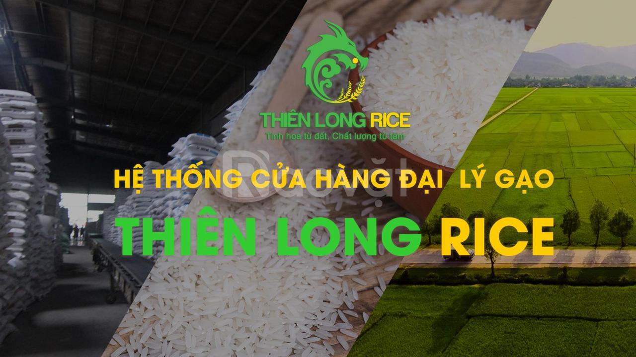 Đại lý gạo tại TPHCM giao nhanh sỉ lẻ gạo ST24, ST25, gạo từ thiện