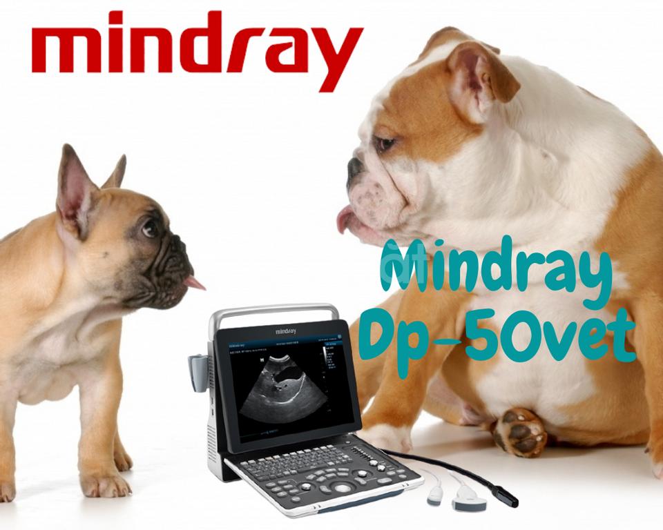 Máy siêu âm thú y Mindray DP10vet