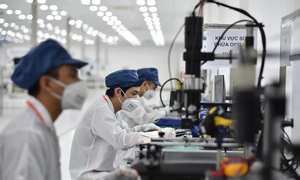 Dịch vụ cung ứng nguồn nhân lực chuyên môn tại Việt Nam