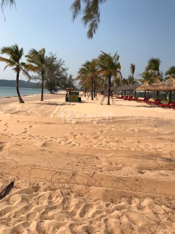 Xe dọn rác bãi biển, xe cào rác bãi biển