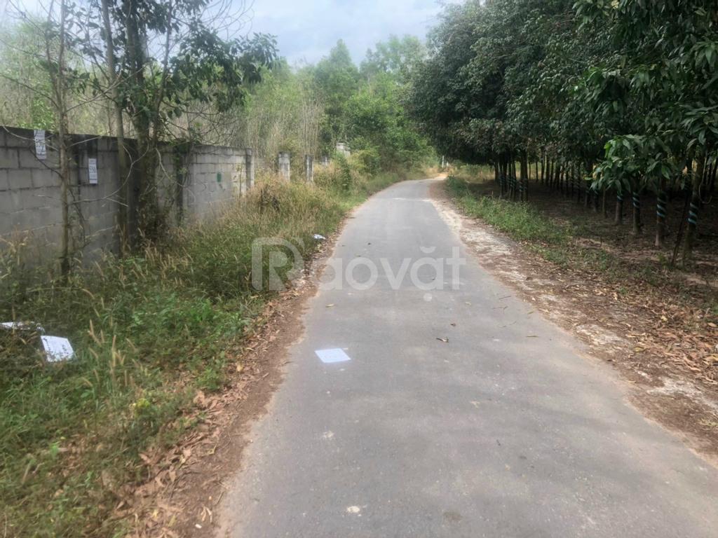 Bán đất thổ cư tại xã Tóc Tiên, Phú Mỹ
