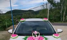 Cho thuê xe du lịch, xe đám cưới ở Mỹ Chánh, Phù Mỹ, Bình Định