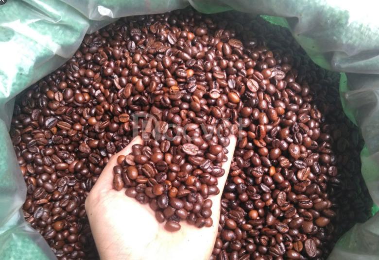 Bảng giá cà phê hạt, bột rang xay nguyên chất 100% 2021