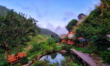 Vườn Nhà Củi homestay Đà Lạt