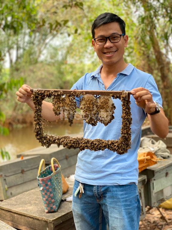 Mật ong tự nhiên chai PET 330 ml