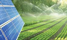 Giải pháp điện năng lượng mặt trời cho lĩnh vực sản xuất nông nghiệp